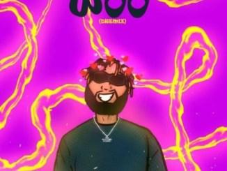 Dremo - The Woo (Dremix) Mp3 Download