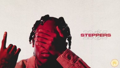 Photo of 22Gz – Steppers