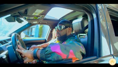 Photo of VIDEO: Timaya – Eff All Day Ft. Phyno