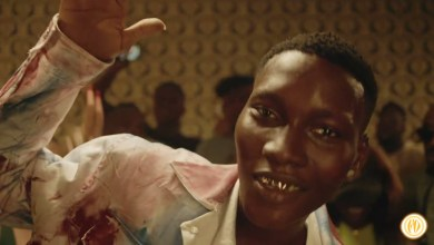 Photo of VIDEO: Zinoleesky – Naira Marley