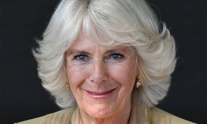 The Duchess of Cornwall just wore a ra-ra dress and it's ...