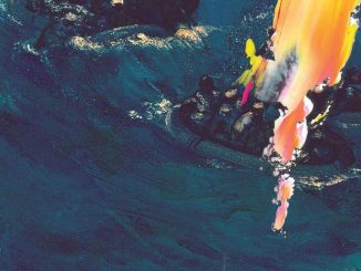 The Avalanches – Electricity (Harvey's Nightclub Re-Edit)