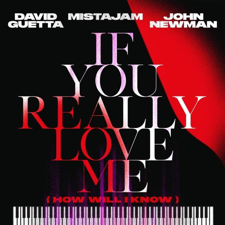 David Guetta x MistaJam x John Newman – If You Really Love Me (How Will I Know) mp3 download