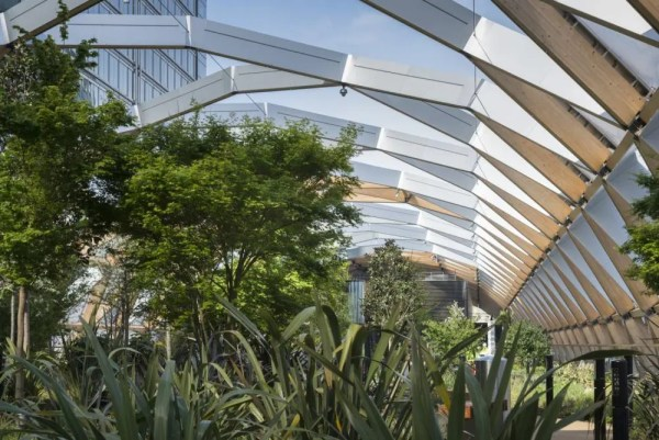 Image Courtesy © Foster + Partners