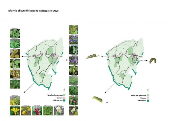 Butterfly life-cycle on Utøya landscape, Image Courtesy © 3RW arkitekter