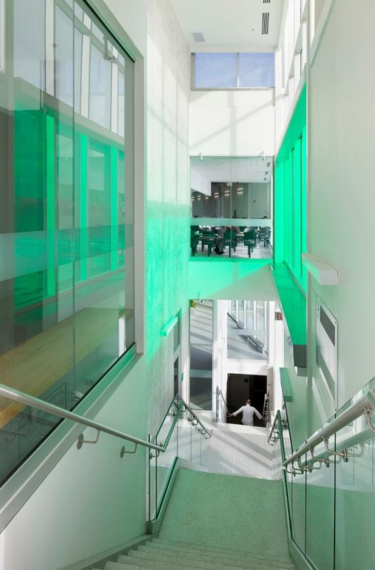 A feature stair connects the three floors with coloured light, Image Courtesy © Tom Arban