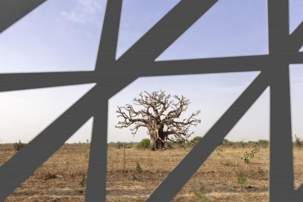 Image Courtesy © Tabanlioglu Architects