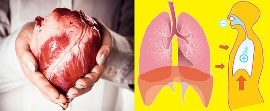 Individual Care of Lung's Health Avoiding Cancer