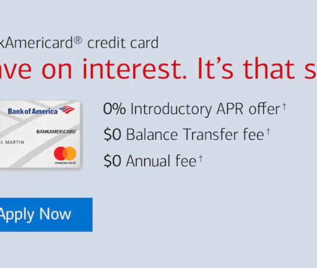 Bank Americard Credit Card Banner