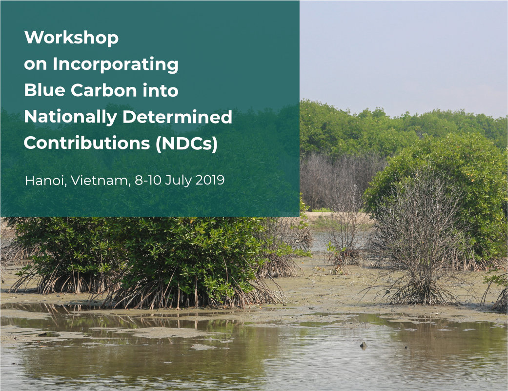Learn  Blue Carbon NDC Workshop
