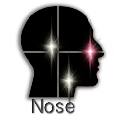 SpannLog-InLogoColorizeNose