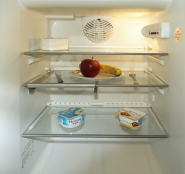 Empty fridge - food addiction is a cause of obesity not being lazy
