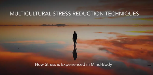 Multicultural Stress Reduction Techniques: Video 2