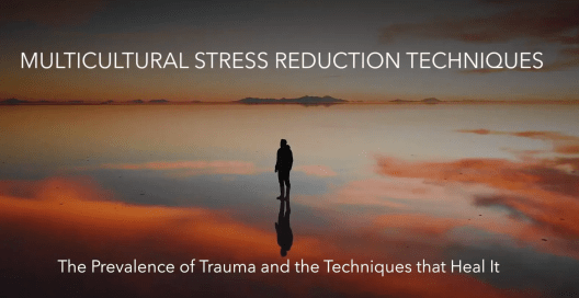 Multicultural Stress Reduction Techniques: Video 3
