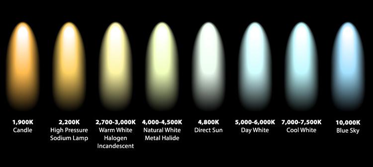 Image result for white balance