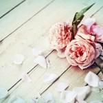 Neutral Flowers Fashion Dresses
