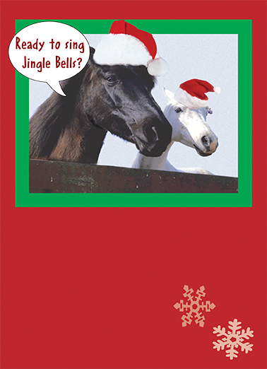 Funny Christmas Card Little Horse From
