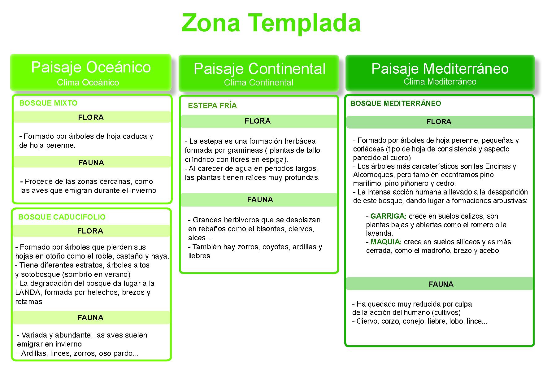 """TEMA 5 """"LOS CONTINENTES"""" – Blog de Miguel Ángel Suárez Umpiérrez"""