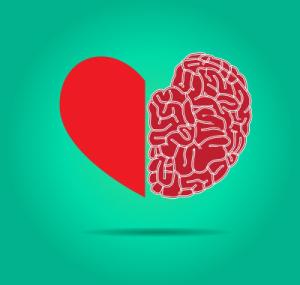 Neurociencia, emoción y aprendizaje en el aula