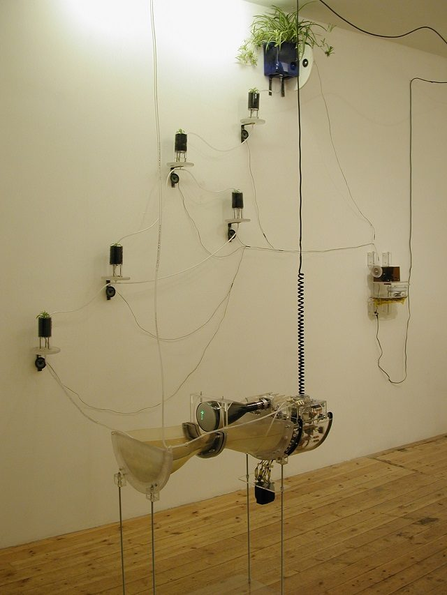Marcus Ahlers: Frequency, 2003, plants, speakers, oscilloscope, radios.