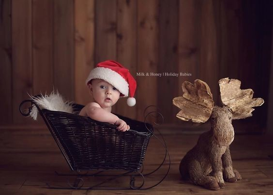 A Boy And A Moose Holiday Family Photo Ideas That Are