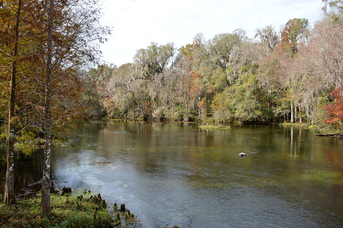 Home Hillsborough River Virtual Watershed Excursion