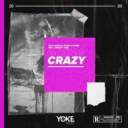 Flip Capella, Otray & Vinze - Going Crazy (feat. Ashley Jana) - Single [iTunes Plus AAC M4A]