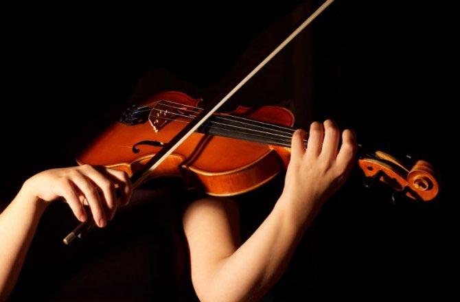 Resultado de imagem para violino