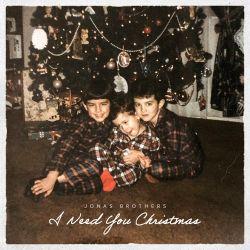 Jonas Brothers - I Need You Christmas - Single [iTunes Plus AAC M4A]
