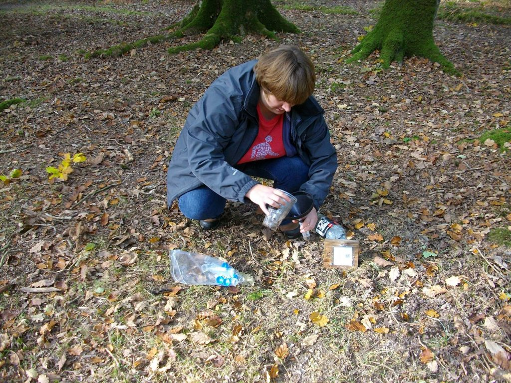 Collecting pitfall trap samples
