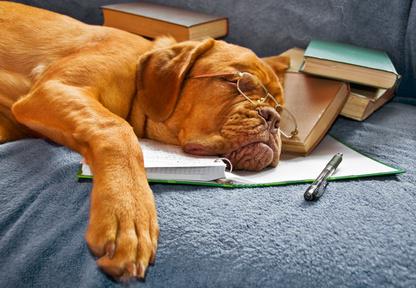 Estudiar no es fácil