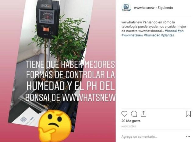 GIFs y emoji en la cuenta de Instagram® para romper el hielo con seguidores