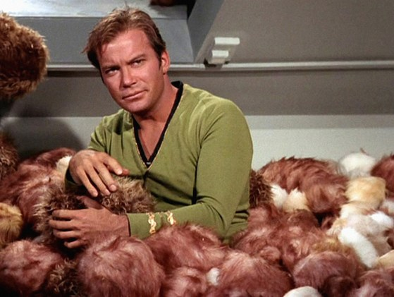 Image result for the trouble with tribbles