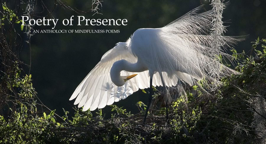 Poetry of Presence     An anthology of mindfulness poems