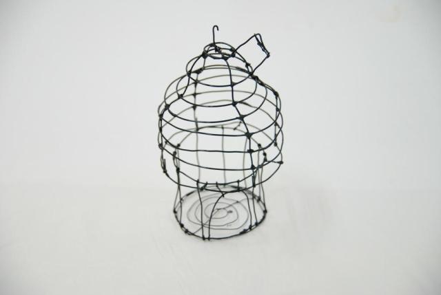 The Invisible Cage 3 wyldeandfree.com