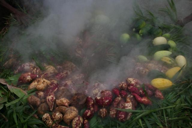 Picture of a vegetables from a harvest being steamed. WyldeandFree.com