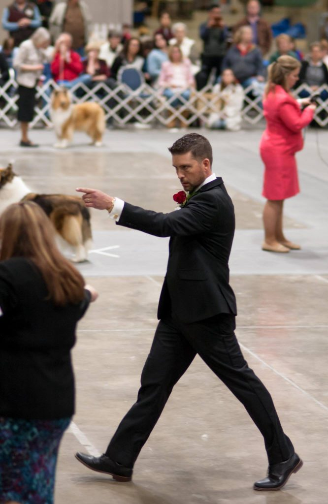 Matt Stelter Dog Show Judge