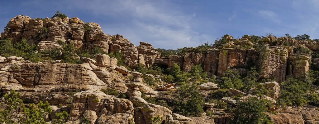 Fantastic Friday: Chiricahua