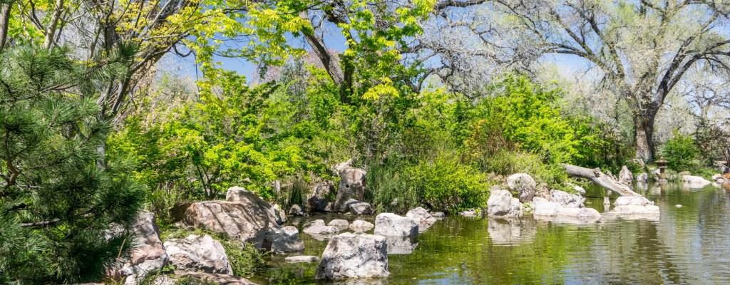 Sunday Serenity: Contemplation