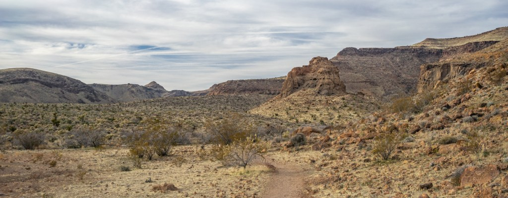 Desert Days: Afternoon Hike