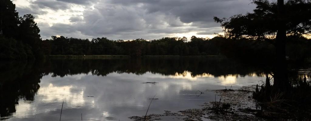 Sunday Serenity: Reflections