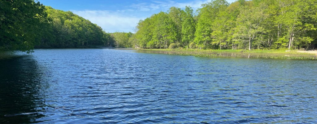 Review: Black Moshannon State Park, PA