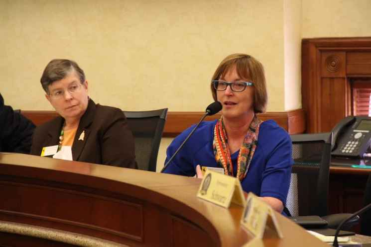 """House Minority Floor Leader Mary Throne (D-Cheyenne) praised the budget proposal for transparently spending investment income that would normally flow to the """"rainy day"""" account. (Gregory Nickerson/WyoFile)"""