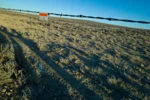 A reflective flag marks a fence to protect grouse from a collission in the winter concentration area where the NPL gas field would be developed. (Angus M. Thuermer Jr./WyoFile.)
