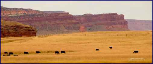 """""""Chugwater sandstone rims and buttes in the Hole In The Wall region of the Middle Fork of the Powder River west of Kaycee Wyo., taken from the public access road leading to the Outlaw Cave campground and Ed O. Taylor wildlife preserve in September."""" (Dewey Vanderhoff)"""