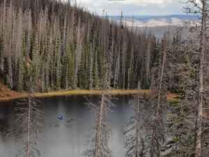 John Calder works on Lake Eileen in Colorado. Calder took mud samples from the lake to determine when large fires burned in the area. (courtesy John Calder)