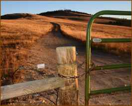 """""""Electric livestock fence meets swinging iron gate on forest service access road leading to cellphone and agency radio towers on Bald Ridge above Chief Joseph Scenic Highway 30 miles NW of Cody. This is a fairly new catch fence to keep publically grazed livestock from getting down into the Clarks Fork Canyon."""" (Dewey Vanderhoff)"""