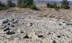 """""""Prehistoric stone circle (tipi ring) [on BLM land] evidencing use of public lands in earlier time."""" (Lawrence Todd)"""