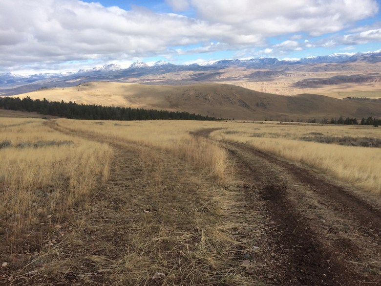 Unauthorized roads such as these abound on the Shoshone National Forest. (Photo courtesy of Sarah Walker / Wyoming Wilderness Association)