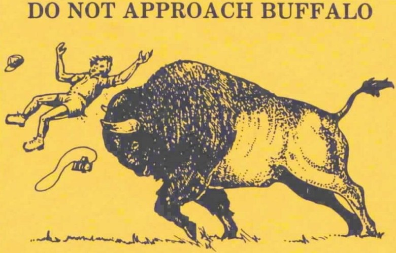 The old Yellowstone National Park flyer warning of bison featured an illustration of an anguished airborne tourist launched by a charging buffalo. (National Park Service)